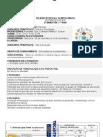 ROTEIRO 7 ANO N4 - ESPECIAL.docx