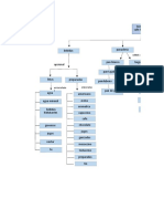 mapa conceptual sandra