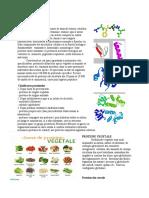 proteine si aminoacizi.docx