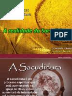 SACUDIDURA - MURUTINGA.pptx