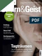 Gehirn_Geist04_16.pdf
