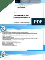 AREAS CRITICAS. PLANEAMIENTO DE AUDITORIA
