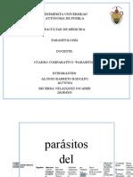 PARASITOS EXTRAS