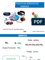 CLASE_-_III-_AMINAS_2