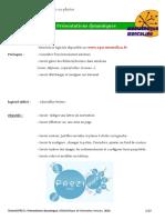 tutoriel bureautique 01 PREZI