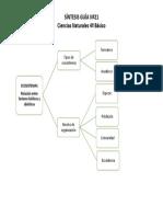 Sintesis Ciencias_Guiìa-No21_4o.pdf