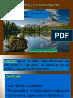 VII RRNN y Energias alternativas.pdf