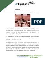 Fotosensibilizacion en Equinos