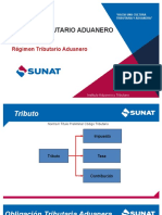 3.2.4 REGIMEN TRIBUTARIO ADUANERO
