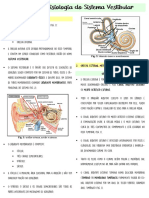 Anatomia e Fisiologia Do Sistema Vestibular
