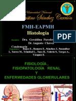 Fisiologia ,Fisiopatologia Renal y Enfermedades Glomerulares i Finalllllllll