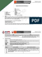 SILABO DE PRACTICA PRE PROFESIONAL II - OK (1)