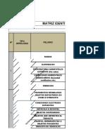 001 FORMATO  IPERC y protocolo de bioseguridad de covid (1) rrrr