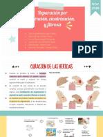 CICATRIZACÍÓN, REGENERACIÓN Y CURACIÓN.pdf