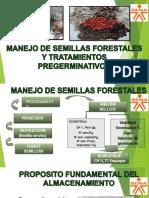 PRESENTACION3 MANEJO DE SEMILLAS