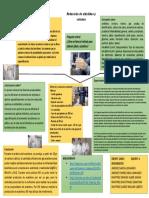 Reducción de aldehídos y cetonas EQUIPO 6(1).pdf