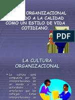 3. Cultura Organizacional (Cándido)
