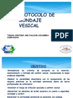 Protocolo Sondaje_vesical