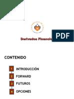 Intrumentos Financieros Derivados PCANCINO(2)