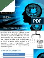 Tipos de Organizacion de Archivos.pptx