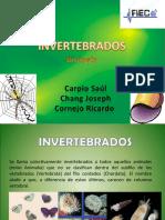 INVERTEBRADOS_2003.ppt