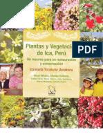 64522001-Plantas-y-Vegetacion-de-ICA-PERU.pdf