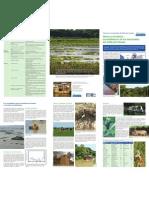 Factsheet bienes y servicios Delta 2010