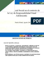 CAP._PERITOS_PUERTO_MONTT[1]