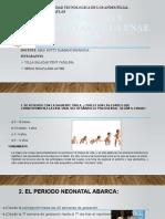 PREGUNTAS Y RESPUESTAS DE LA ENAE 2015.pptx