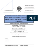 MEMOIRE SANTINI.docx