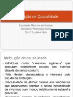 Atribuicao-de-Causalidade-ppt