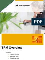 APRESENTAÇÃO - TREASURY AND RISK MANAGEMENT.pdf