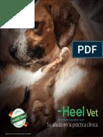 Portafolio Animales de compañía.pdf