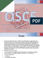 Colonna_anatomia piede caviglia..pdf