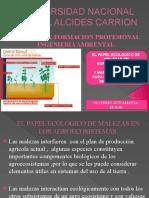 EL PAPEL ECOLOGICO DE MALEZAS Y MANEJO DE MALEZAS