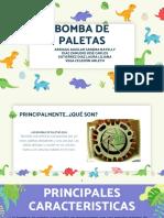 BOMBA DE PALETAS.pdf