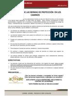 45 - Importancia de las Bermas.pdf