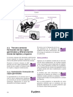 OPE2019_ejemplomatronas_temario_4