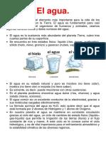 Ficha informativa-El agua