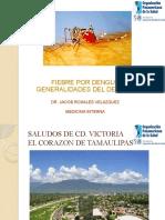 presentacion dengue 2010