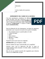 EXPERIMENTO DE LOS CAMBIOS DE LA MATERIA
