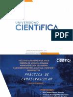 2 Practica II-Arterias-2020-I