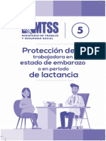 05_trabajadora_embarazada.pdf
