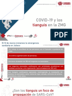 Tianguis COVID-19 2020 v1