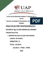 Abdenir Nelson Colque Santamaria.pdf