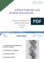 2.1 Estructura de los Acido Nucleicos