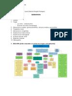 SEMINARIO 3 DE FISIOLOGIA  .docx