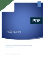 PRACTICA 6- CICLO CELULAR.pdf