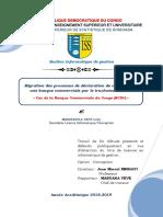 MemoireLady.pdf
