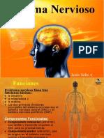 4 Sistema Nervioso